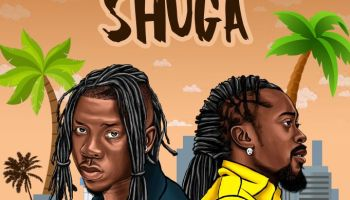 Video Edem Power Ft Stonebwoy Official Video Felisco Blog The Premium Site For Your Music And More Others